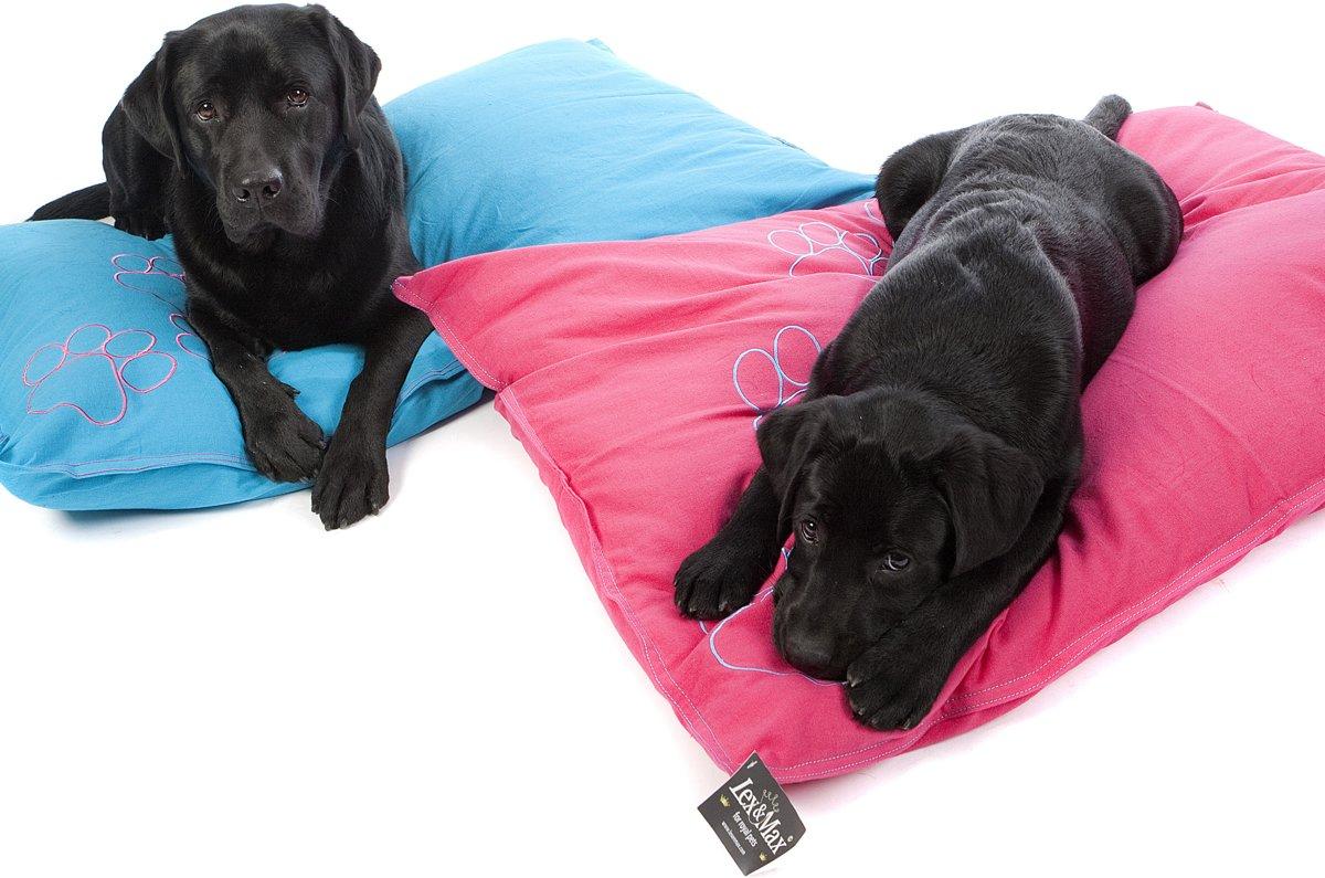 Interieurtip voor hondenbezitters